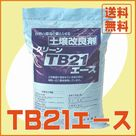 TB21エース